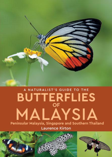 Butterflies of Peninsular India