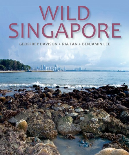 Wild Singapore cover