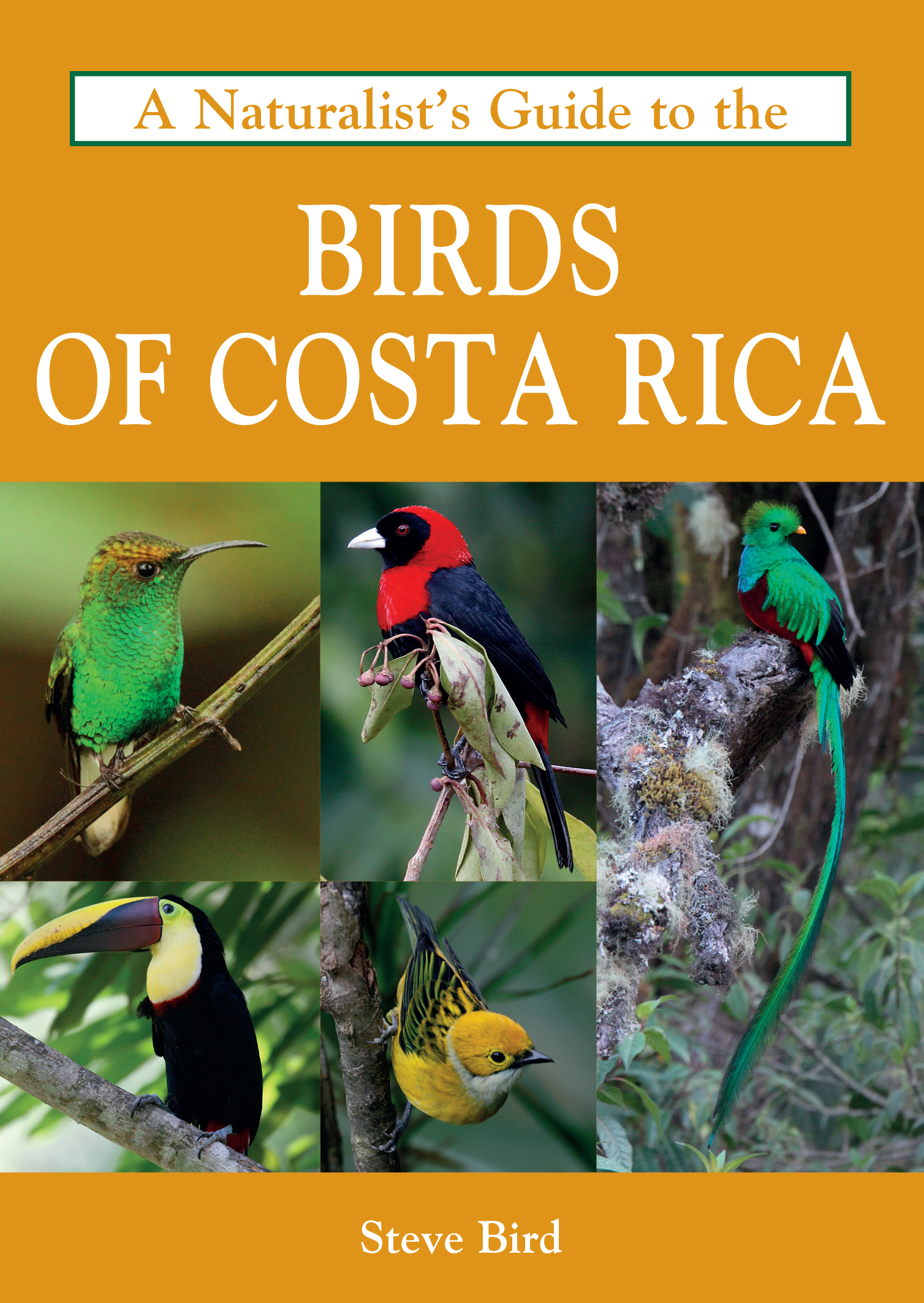 An introduction to the history of saving costa rica